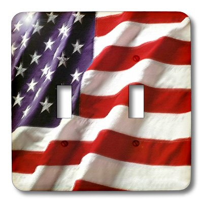 - 3dRose LLC lsp_12146_2 Textured American Flag, Double Toggle Switch