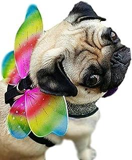 Pet Dog Cat Animal Rainbow Fairy Pixie Butterfly Angel Wings Fancy Dress Costume  sc 1 st  Amazon UK & Rubieu0027s Official Pet Dog Costume Rainbow Fairy Wings - Small/Medium ...