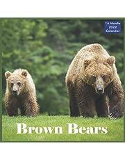 Brown Bears Calendar 2022: Official Grizzly Bears Calendar 2022, 16 Month Calendar 2022