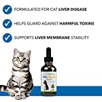 Pet Wellbeing - Milk Thistle for Cats - Natural Support for Feline Liver Health - 2oz (59ml) 14