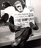 Historical Photo Collection 8 x 10 Photo Vintage Space Chimp Lives After Rocket Launch Test On High Qquality Fiji Film Paper
