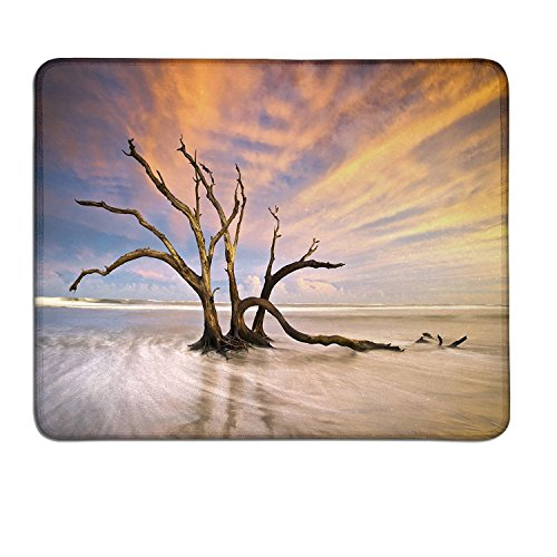 Driftwood personalized mouse pad Seascape Theme Dead Tree Driftwood in the Ocean at Sunset Landscape Printdrawing mouse pad Beige and Orange (State Florida Landscape Seminoles)
