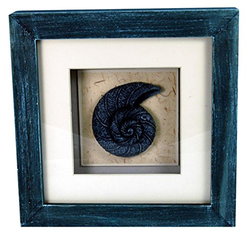StealStreet LHE-788 Ss-Ug-Lhe-788, 6'' Nautilus Aquatic Life Shadowbox Decorative Frame, Blue by StealStreet