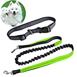 Kekilo Hands Free Dog Leash, Durable Dual Handle Running Dog Leash, Shock Absorbing Extendible Bungee, with Adjustable Waist Belt, for Running, Walking, Jogging, Hiking or Training for Pets Dog (Green)