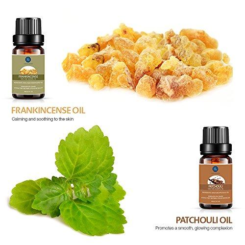 Lagunamoon Essential Oils Gift Set of 16 Pure Essential Oils Gift Set for Diffuser Humidifier Massage Aromatherapy Skin amp Hair Care