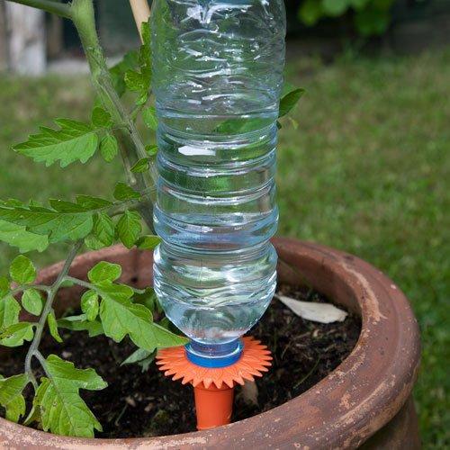 Tonkegel Bewässerung caraselle wasserspender bewässerungssystem für pflanzen amazon de