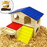 Alfie Pet by Petoga Couture - GARI Wood Hut for Small Animals like Dwarf Hamster and Mouse - Size: Large