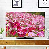 Ge 50 Inch Tvs Review and Comparison