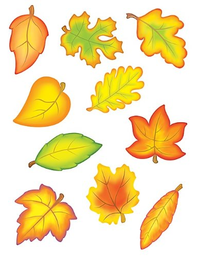Teacher Created Resources Fall Leaves Accents Packs (4419) -