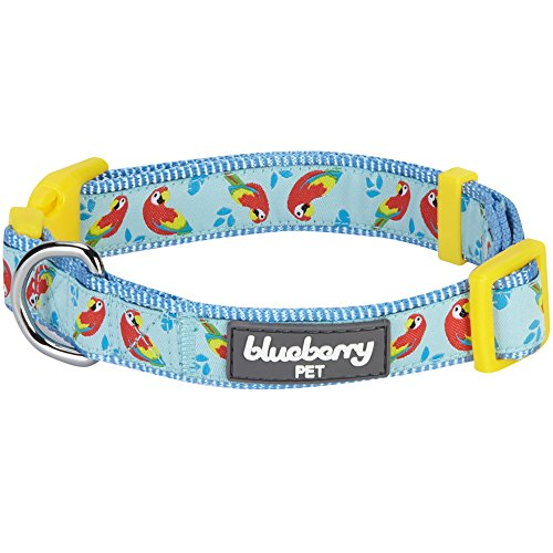 Blueberry Pet Essentials 10+ Patterns Zoo Fun Dog Collars