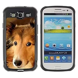 Suave TPU Caso Carcasa de Caucho Funda para Samsung Galaxy S3 I9300 / Border Collie Smart Dog Canine Pet / STRONG