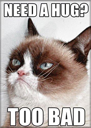 (Ata-Boy Grumpy Cat 'Need a Hug? Too Bad' 2.5