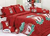 Liverpool Football Club Bedding In Bag Set ; 1 Four Season Comforter with 4 pieces of Bed Fitted Sheet Set (Queen Size, LI002)