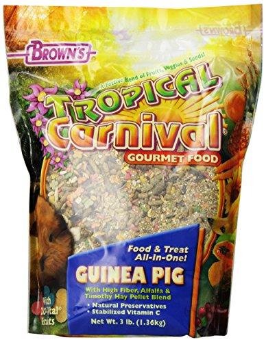 Tropical Carnival Guinea Pig Food - 3
