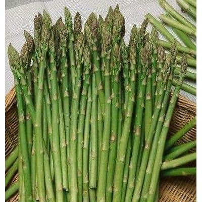 Mary Washington Asparagus Seed - Perennial Heirloom Vegetable Seeds (1g : Garden & Outdoor
