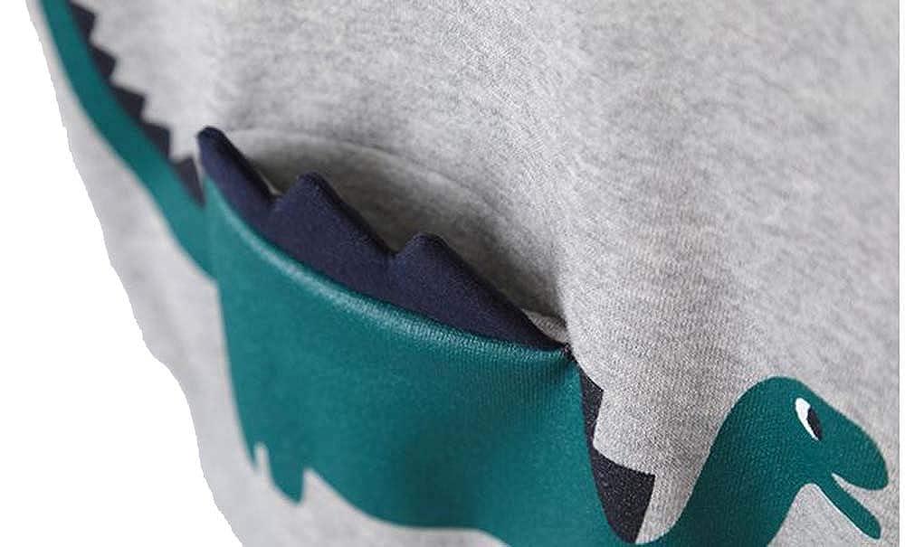 Ozkiz Tiny Dino Little Boys Comfortable Casual Grey Long Sleeve Sweater with 3D Dinosaur Pocket