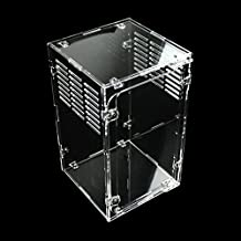 Dalle Craft Acrylic Reptile Terrarium Habitat for juvenile and small arboreal tarantulas chameleon snails or other Larval Reptiles (5.9X5.9X9.8inchV)