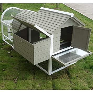 del Verde Mundo Gallinero para gallinas ponedoras de jardín | Mod. amrock: Amazon.es: Jardín
