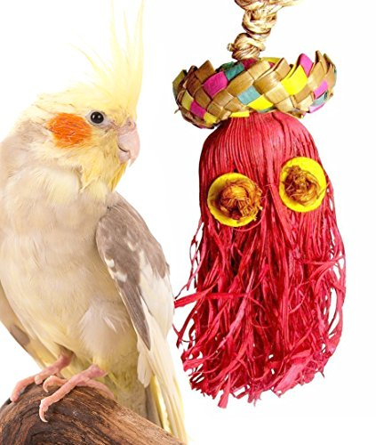 41329 Small Monster Bird Toy Cage Toys Cages Foraging Chew Shredder Cockatiel