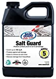 Rainguard SP-1005 32 oz Concentrate (Makes 5 Gallons) Premium Grade Salt Guard, Protection from Road Salt and Ice Damage