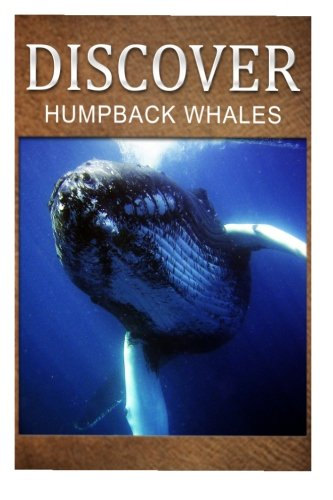 Humpback Whales - Discover: Early reader's wildlife photography book