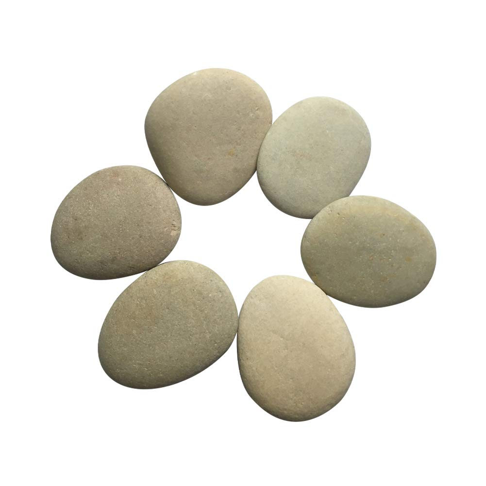 Lifetop Painting Rocks - Set of 6, DIY Rocks for Painting Kindness Rocks Smooth Surface Stones,Arts and Crafts (Style 2) by lifetop