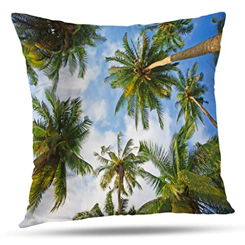 Kutita Palm Trees Decorative Pillow Covers, Coconut Palm Trees Tree Sky Sun Green Nature Beautiful Throw Pillow Decor Bedroom Livingroom Sofa 18X18 inch