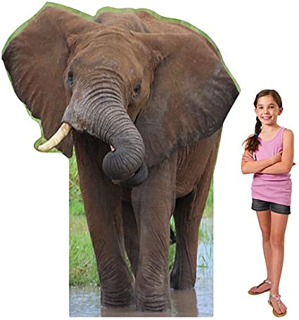 STANDUP BABY ELEPHANT LIFESIZE CARDBOARD Zoo Wildlife Animal CUTOUT STANDEE