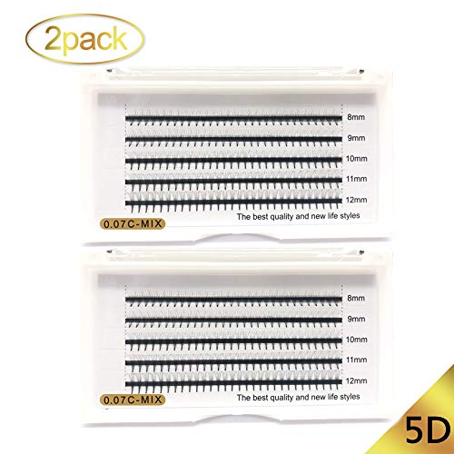 5D Premade Volume Fans Eyelash Extensions C Curl 8-12mm Length 0.07mm Thickness Fashionable clusters Lash Extensions 5D 2trays