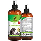 Organic Pet Stain and Odor Remover & Enzyme Cleaner Spray – Dog or Cat Odor Eliminator For Carpet – Best Organic Eucalyptus w/ Tea Tree Oil - 4 FL Oz By Pet Diesel