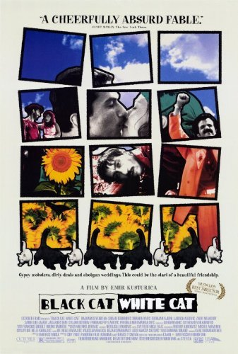 Swarthy Cat, White Cat POSTER Movie (27 x 40 Inches - 69cm x 102cm) (1998) (Style B)