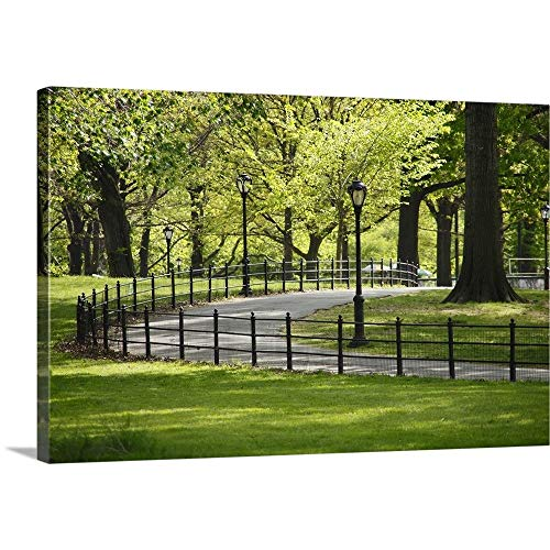 Great Big Canvas Gallery-Wrapped Canvas Entitled Path goes Through Under The Fresh Green Trees 48