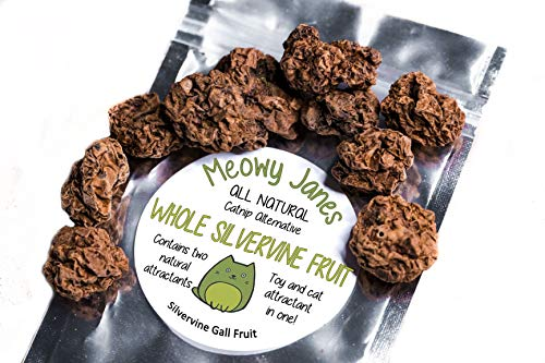 Meowy Janes Whole Silvervine Fruit- Dried Silvervine Gall Fruit- Actinidia Polygama - Cat Toy - Cat Treat