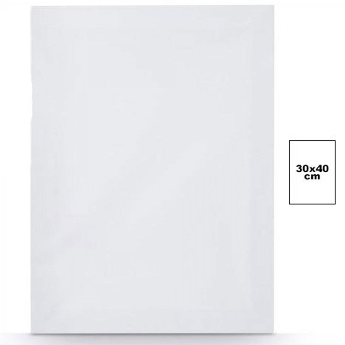 TrAdE shop Traesio Tela per DIPINGERE Canvas Rettangolare 30X40 CM Artico Disegno Arte Pittura