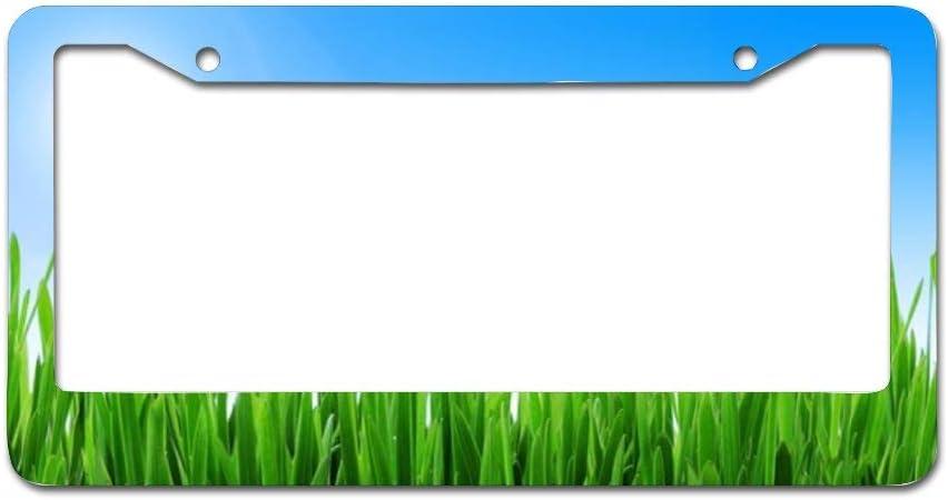 Text Graphic Custom Personalized MicroToo License Plate Frame 12.25x6.5 Precise Size Screws /& Caps Included Premium Alluminium