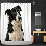 Rongx Close Up of A Border Collie Shower Curtain,113378 for Bathroom,84''W X 72''H 5