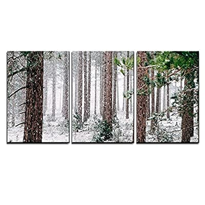 Stunning Print, Crafted to Perfection, Pine Trees Covered with Snow x3 Panels