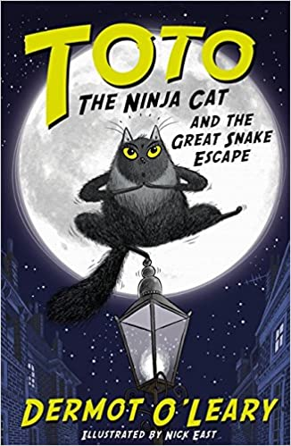 Image result for Toto the Ninja Cat and the Great Snake Escape by Dermot O'Leary