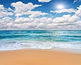 Chic Beach Backdrop Tropical Ocean Chic Seaside Sunny Blue Sky with White Cloud Sunshine Printed Fabric Photography Background (H00187, 10' Wide by 8' Tall)