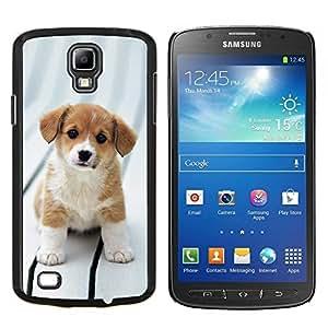 Beagle del perro de perrito de Bretaña canina- Metal de aluminio y de plástico duro Caja del teléfono - Negro - Samsung i9295 Galaxy S4 Active / i537 (NOT S4)