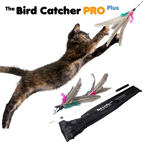 Bird Catcher PRO Plus Cat Feather Wand Toy