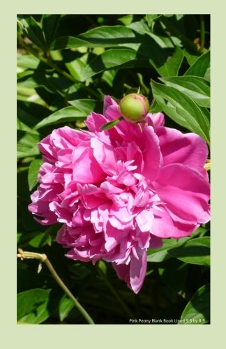 Download Pink Peony Blank Book Lined 5.5 by 8.5: 5.5 by 8.5 inch 100 page lined blank book suitable as a journal, notebook or diary with a cover photo of a bright pink peony PDF