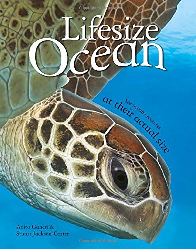 Lifesize: Ocean: See Ocean Creatures at their Actual Size PDF
