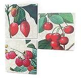Set of 3 Farm Fresh Strawberry, Cherry & Raspberry Decorative Wall Art Canvases