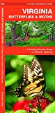 Virginia Butterflies & Moths: A Folding Pocket Guide to Familiar Species (Wildlife and Nature Identification)