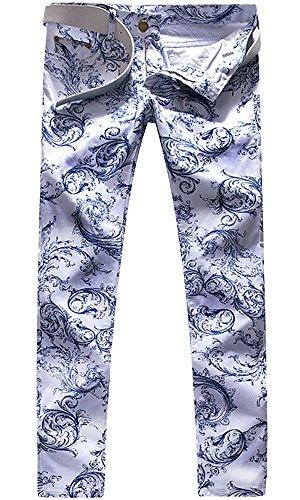 Men's Paisley Porcelain Floral Print Straight Leg Slim Stretch Denim Jeans Pants