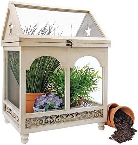 Design Toscano Wooden Wardian Terrarium Plant Case