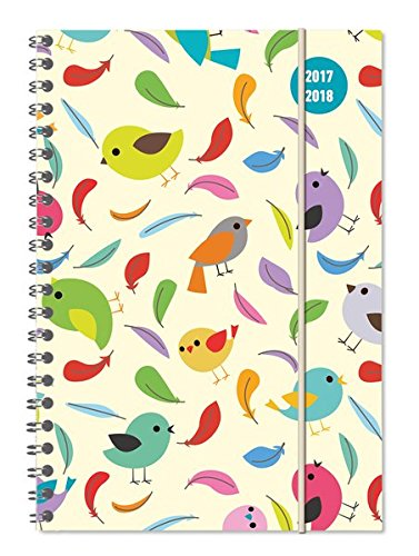 Collegetimer Birds 2017/2018 - Schülerkalender A5 - Weekly - Ringbindung - 224 Seiten