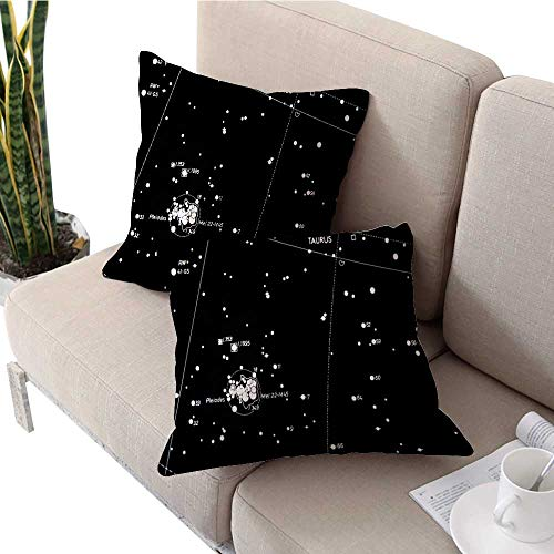 longbuyer Square Euro Sham Cushion Cover Pleiades Open Star Cluster(Seven Sisters M) Pillow Covers W 18