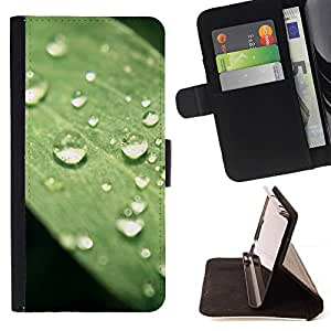 Momo Phone Case / Flip Funda de Cuero Case Cover - Planta Naturaleza Forrest Flor 75 - LG Nexus 5 D820 D821